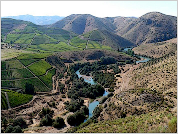 Vale do Côa - Projecto: avaliar impactos do clima nas culturas da terra