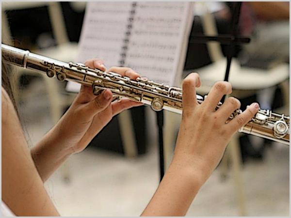 De louvar – houve música clássica em Pinhel