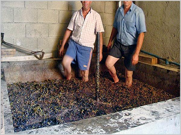 O fabrico caseiro de vinho era uma das maiores «indústrias» locais