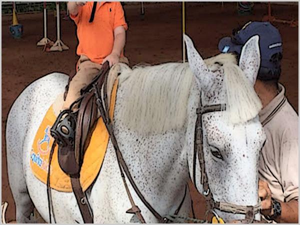 Em Almeida: equitação «na» escola!