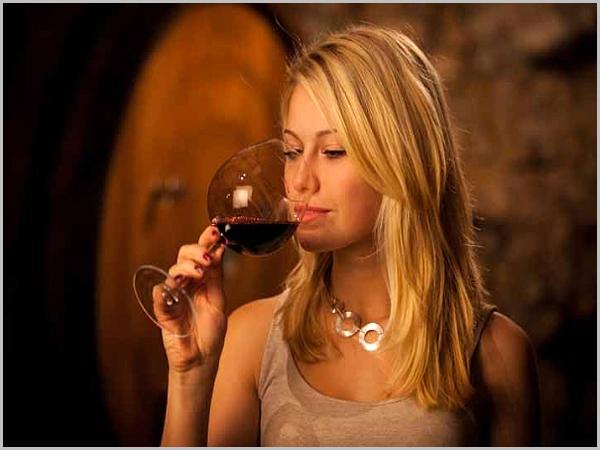 São Martinho e a arte de beber vinho