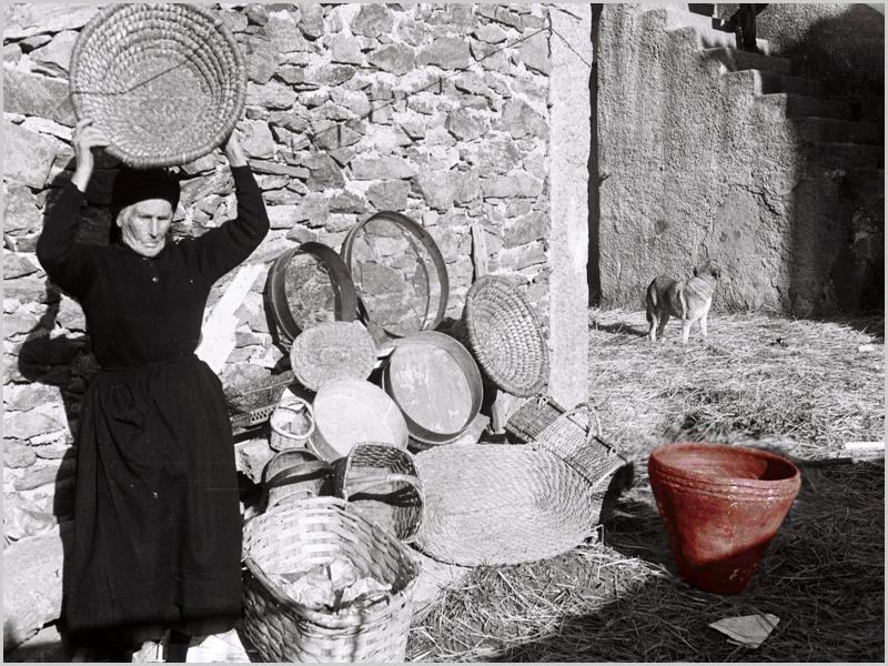 À direta da avó do autor o barranhão para fazer morcelas, farrenheiros e chóricês