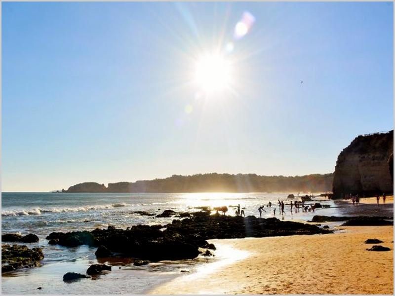 Alguns alimentos, sol e ar livre: vitamina D ajuda no COVID