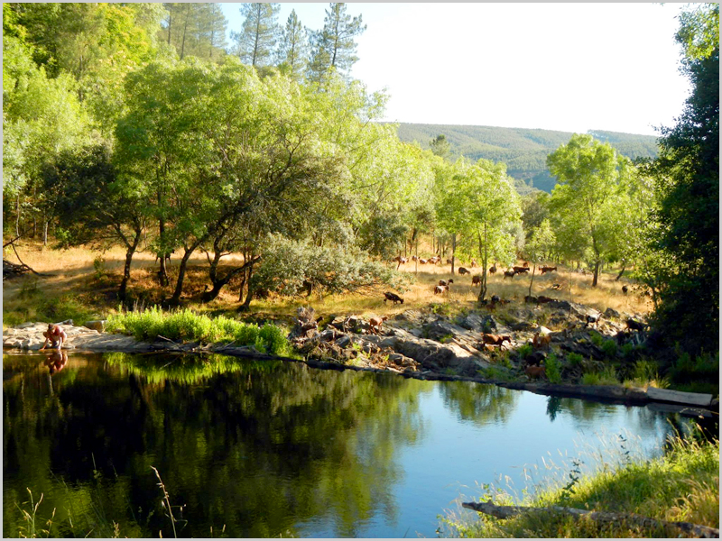Quinta da Bazágueda na Serra da Malcata