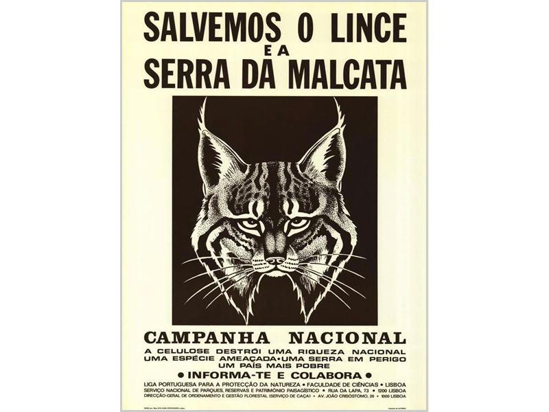 Cartaz da campanha «Salvemos o Lince da Serra da Malcata»