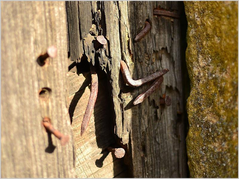 Pormenor da porta de madeira da entrada da casa