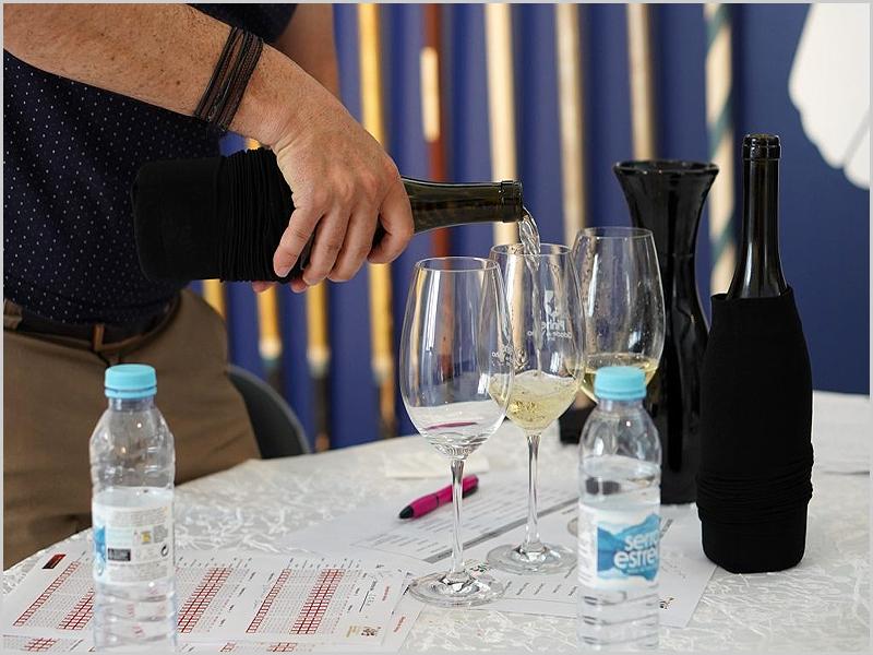 Pinhel: vinhos para a nova gastronomia...
