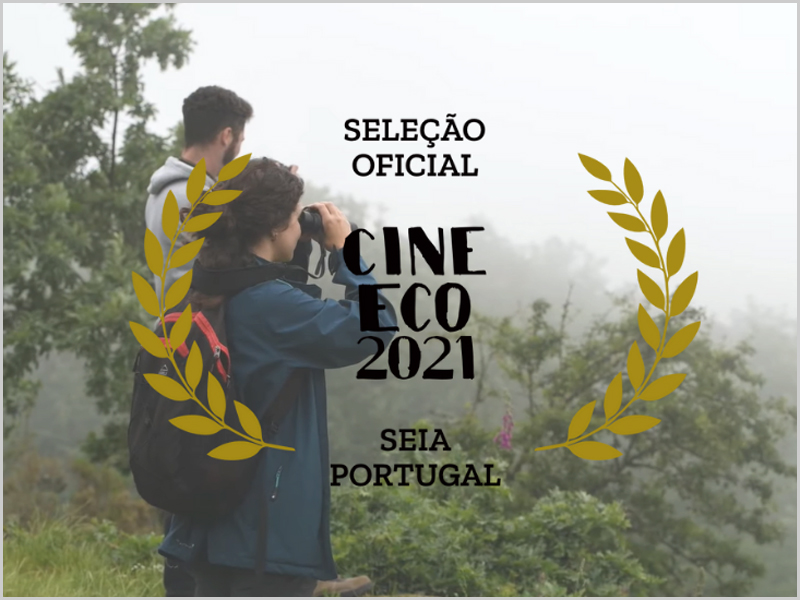 CineEco 2021