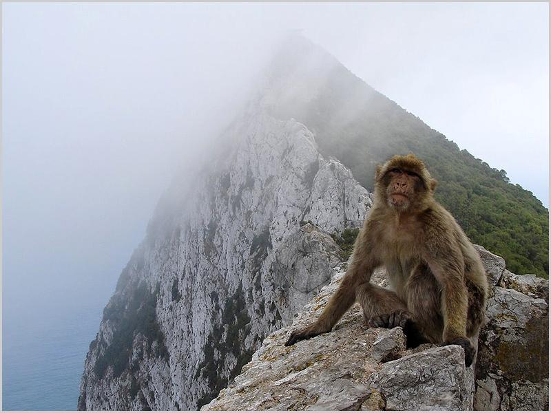 Gibraltar – quimera británica de un imperio desaparecido